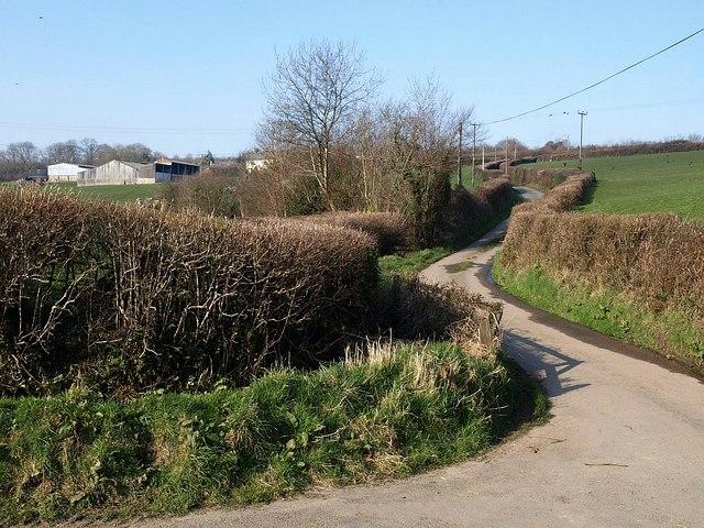 Lane to Southcott