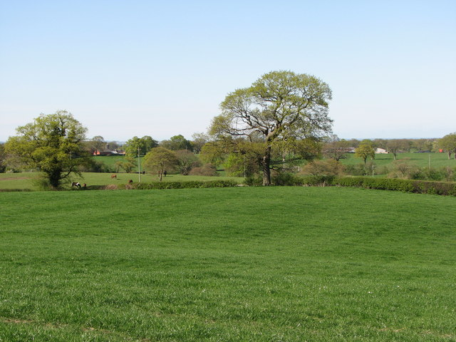 View north from Birch Hill Caravan Club CL