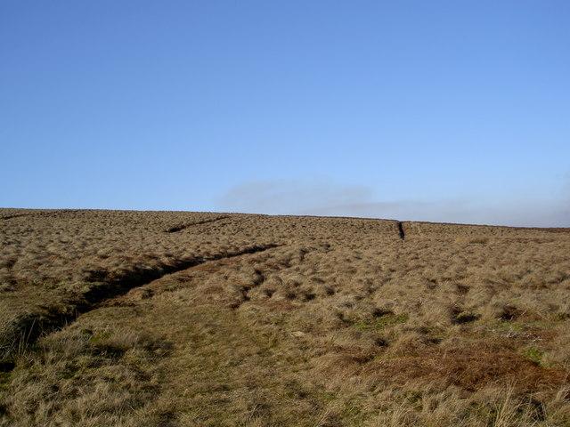 Burnt Moor