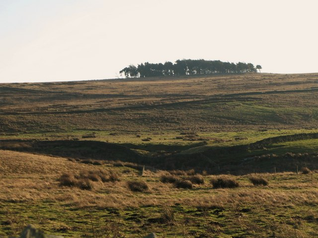 Towards Green Hill