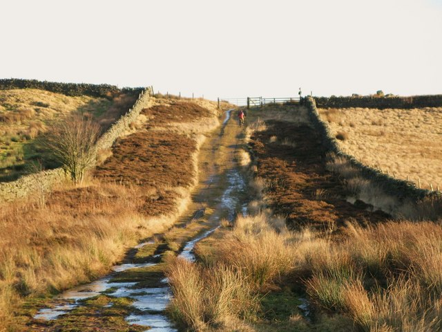 The track to Stobb Cross