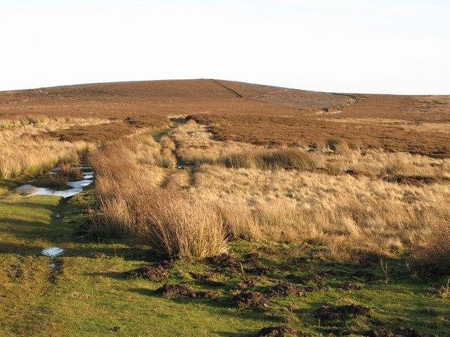 Moorland below Hill 401 (2)