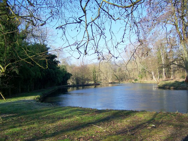 Pond at Little Durnford Manor