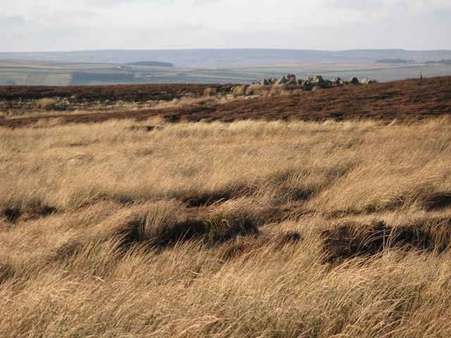 Moorland near Haggerstone Moss