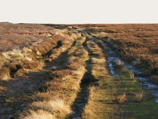 The track to  Stobb Cross (2)