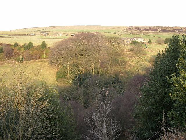 View over Hey Wood, Scammonden