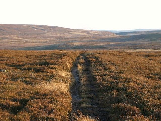 Track across Hexhamshire Common
