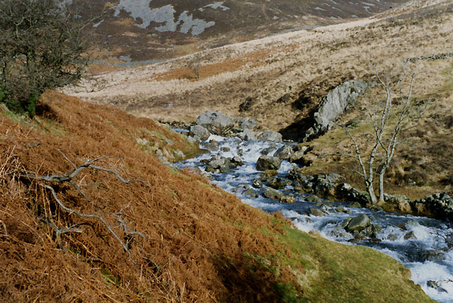 The Nant Cadair above the woods