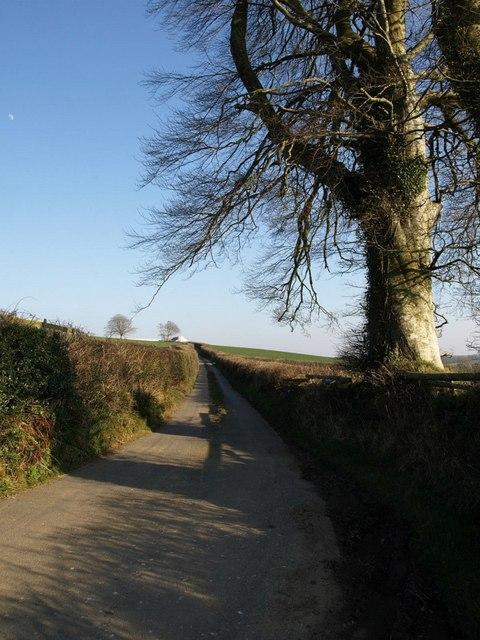 Lane to Craneham