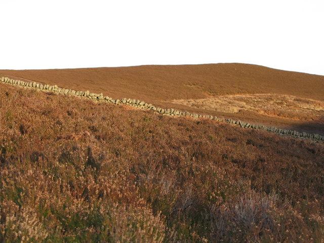Hill 374 on Westburnhope Moor