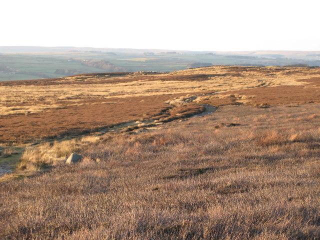 Track across the moorland below Hill 401