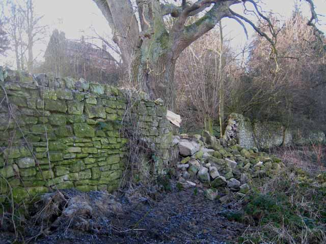 Ruined wall at West Fell