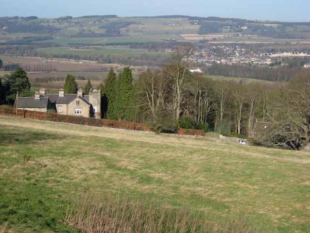 Hillside above Corbridge