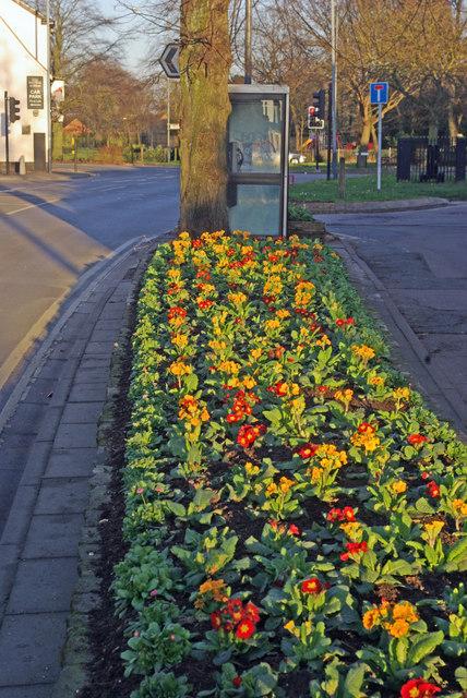 Main Street, Bilton