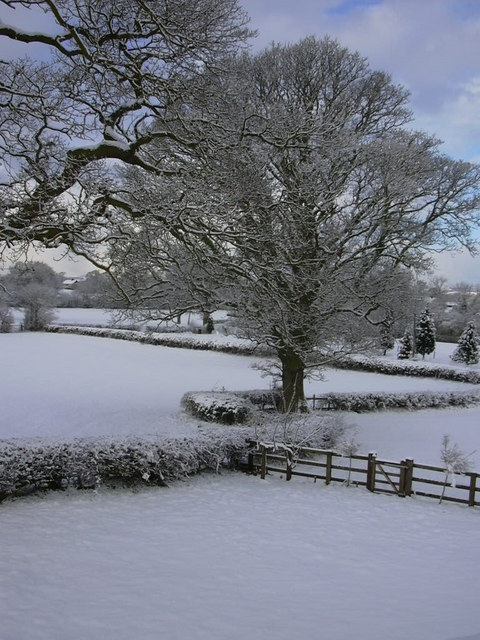 Rural snow scene at Birch Hill Farm, Ellesmere, Shropshire