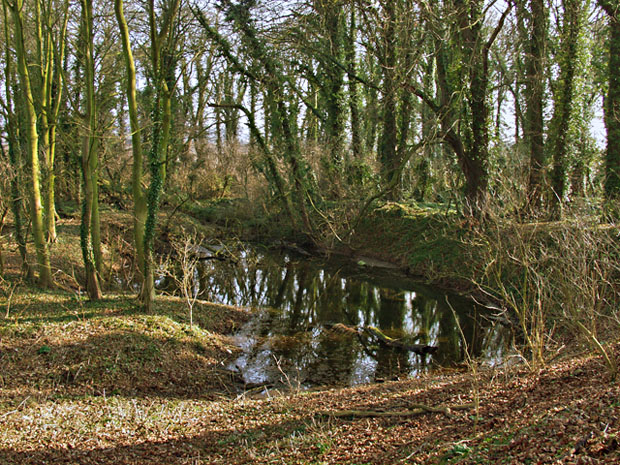 Flooded pit, near Elloughton