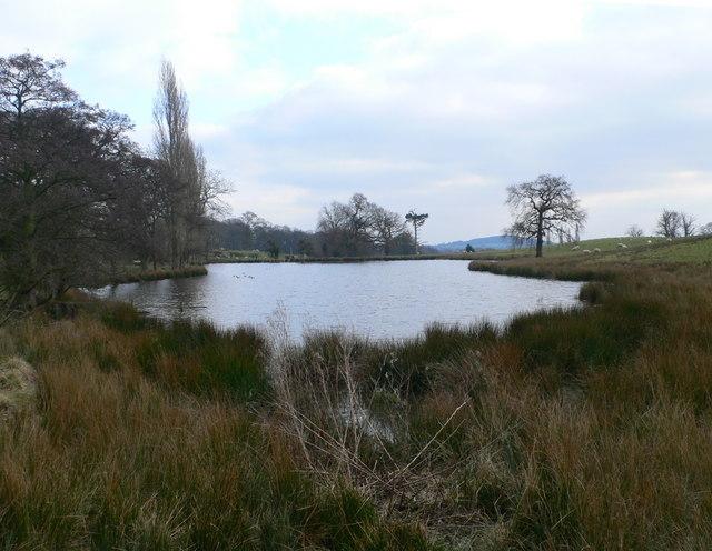 Lake near Plas Newydd Farm, Pontblyddyn