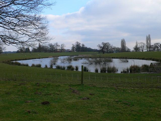 Lake near Plas Newydd Farm