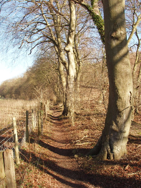 Bridleway, Fingest to Cadmore End
