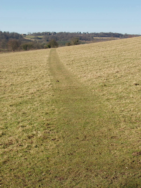 Footpath above Fingest
