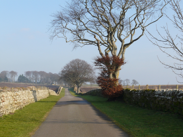 The approach to Glenmorangie House