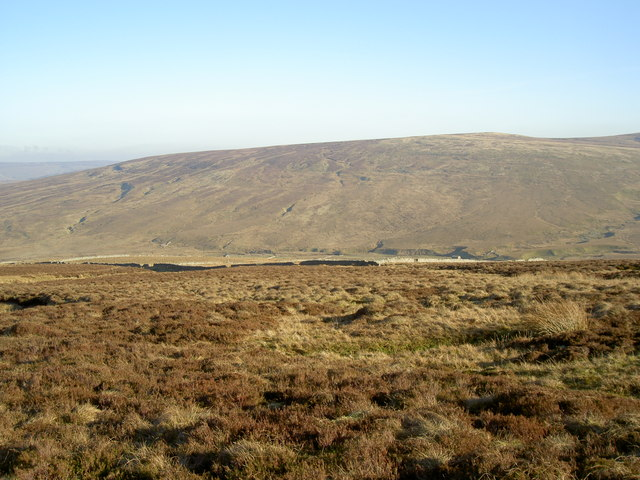Looking towards the West end of the sheepfolds