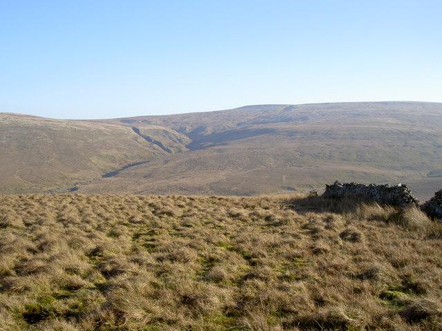 Sleddale Pasture