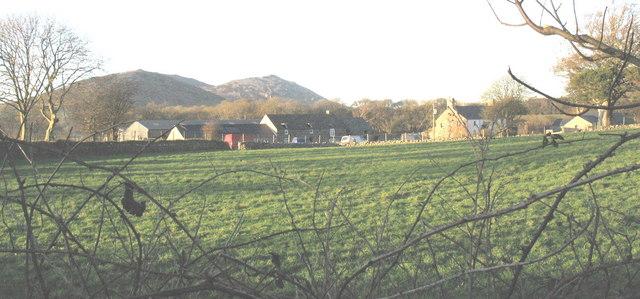 View across fields towards Llwyndyrys Farm