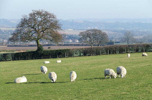 Staffordshire Farm Land near Seisdon