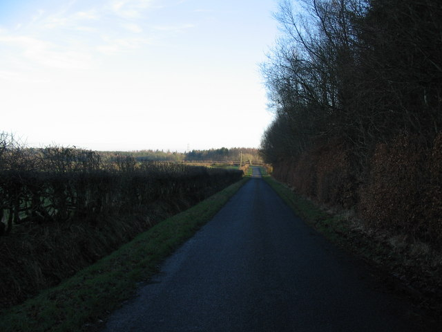 Lane near Daffiestonrigg Wood
