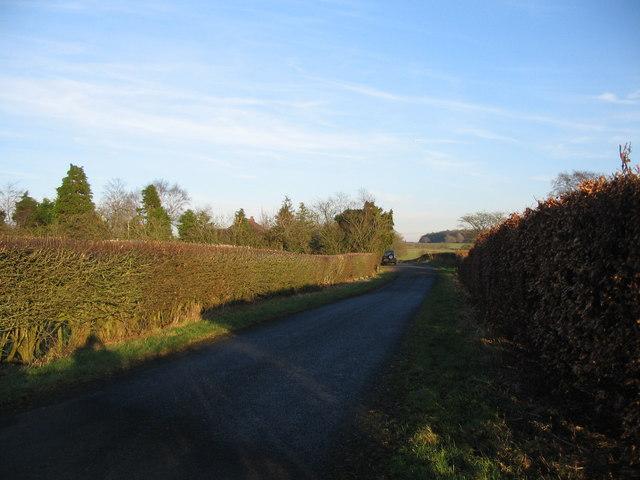 Approaching Beck Bungalow