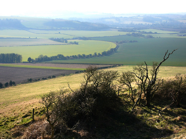 From Old Winchester Hill