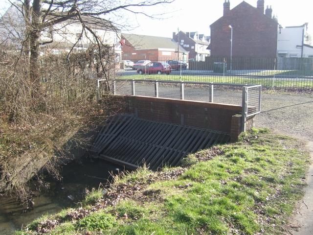 Smestow Brook - Nine Elms Lane