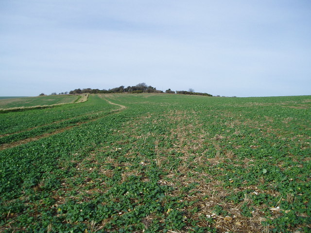 Arable land on south downs