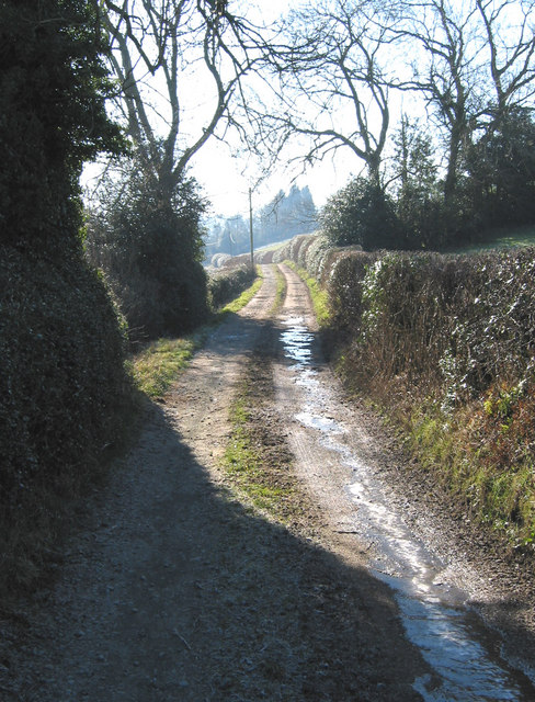 Track to Hope Common