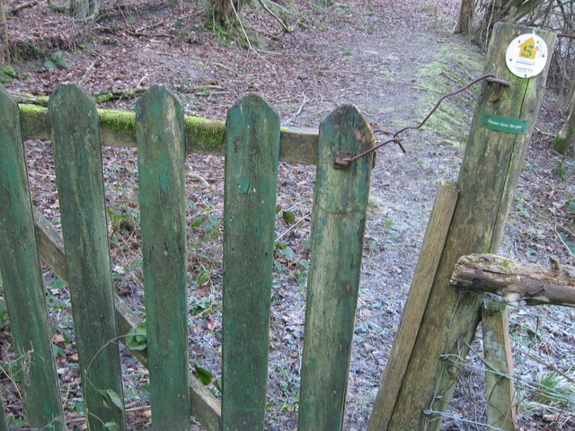 Old gate in the woods