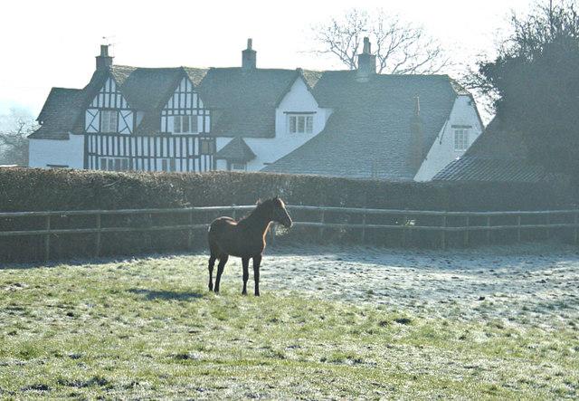 2008 : Catridge Farm