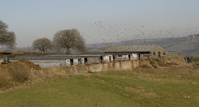 Broford Farm