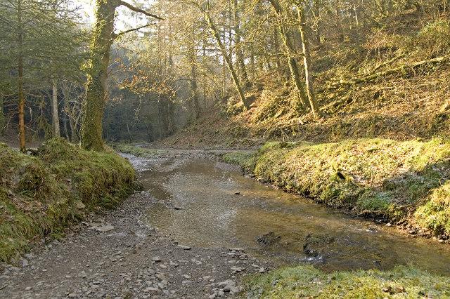 Ben Brook, Skilgate Wood