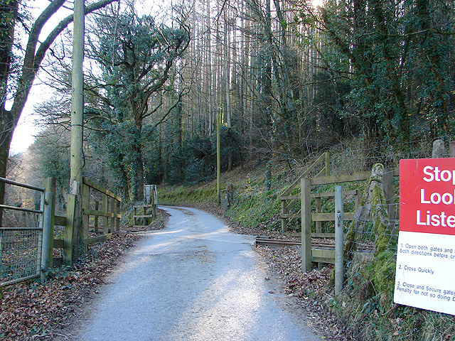 The track to Rhiwarthen crossing the Vale of Rheidol Railway