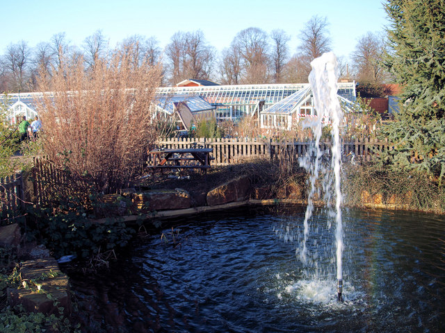 Dukeries Garden Centre in the grounds of Welbeck Abbey