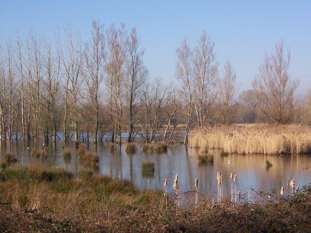 Fishlake Wetlands