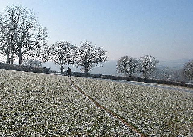 Footpath through a frozen field