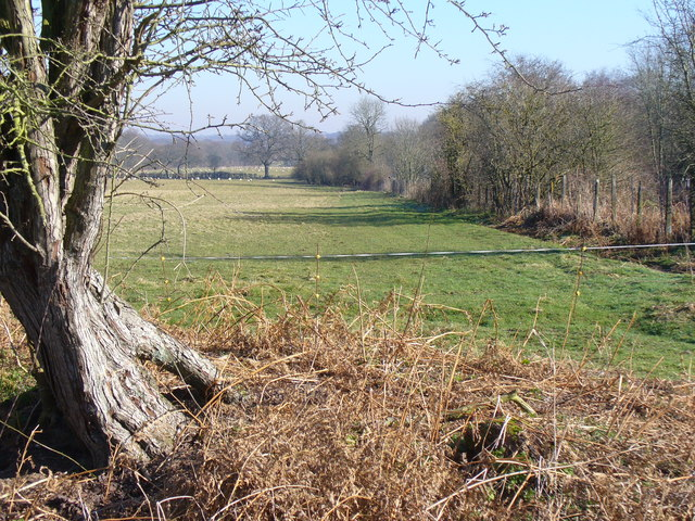 North of Gason Wood