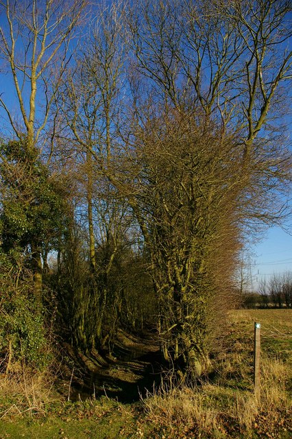 Moat and Heards Lane