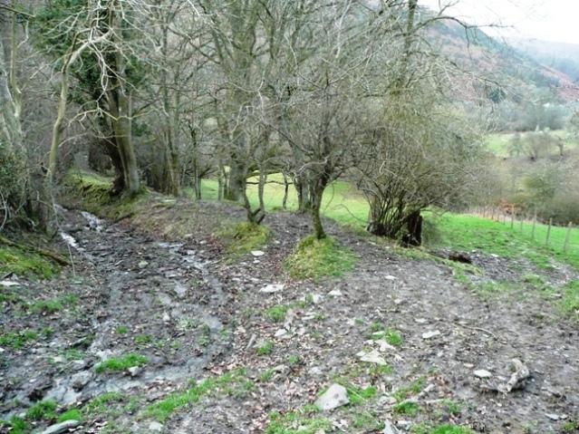Path to Rhyscog