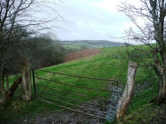 Farmland south of Rhyscog