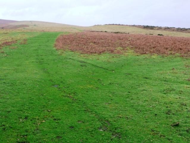 Moorland above Allt Goch