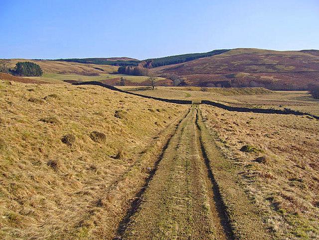 Farm track and pasture near Lurg
