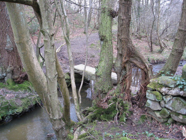 Kelstedge - Smalley Brook, Stone Bridge and some Interesting Roots